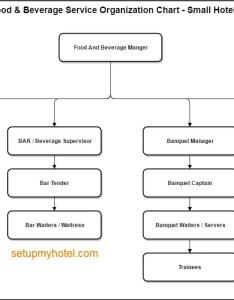 Organization chart sample food and beverage small hotels also department rh setupmyhotel