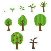 thumbnail_tree