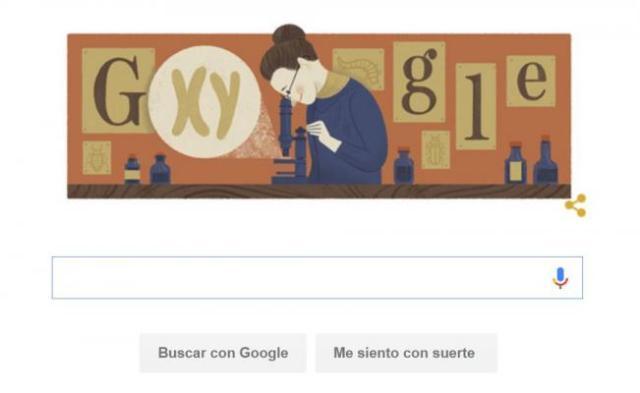Google conmemora Nettie Stevens, descubridora de los cromosomas XY