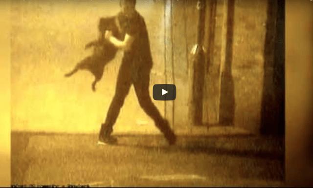 Video: Captan a hombre maltratando a su perro