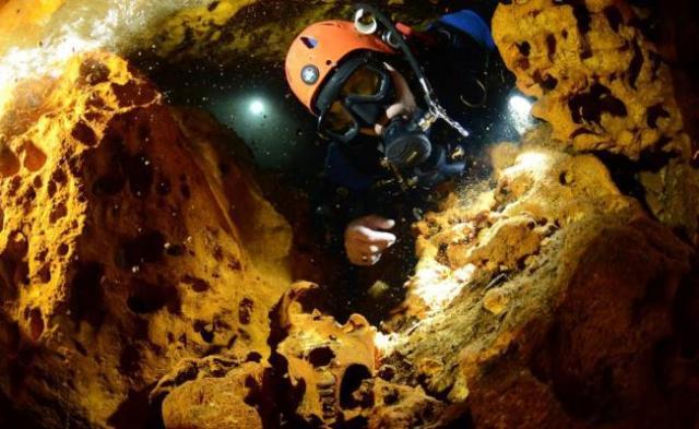Hallan restos de osos de la Edad de Hielo en cueva de Quintana Roo