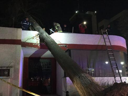 Atiende Toluca cerca de 50 reportes por ráfagas de viento