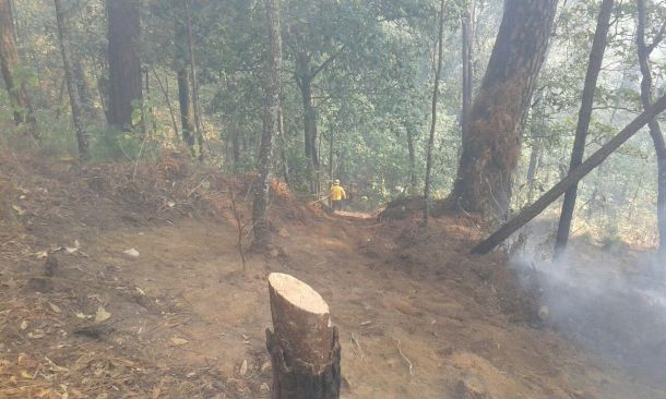 Controlan 70% de incendio forestal en santa maría, cuernavaca