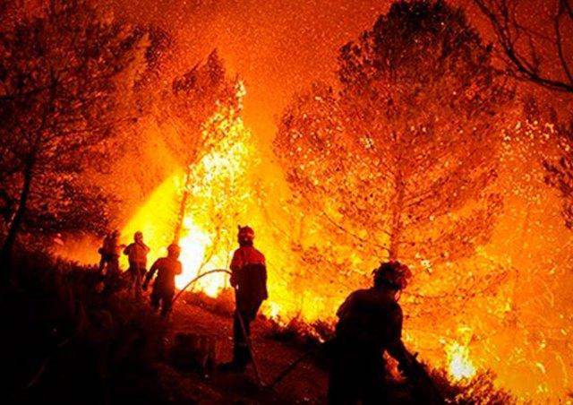 Atiende Edoméx incendio forestal en Texcoco