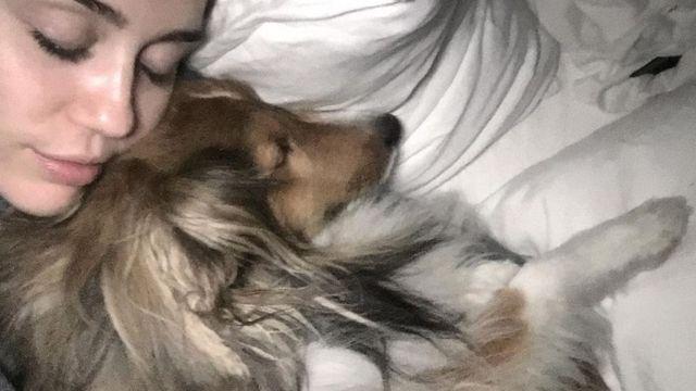 Miley Cyrus se tatuó el rostro de su perro