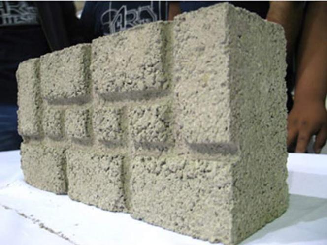 Crean impermeabilizantes de baba de nopal para construcción