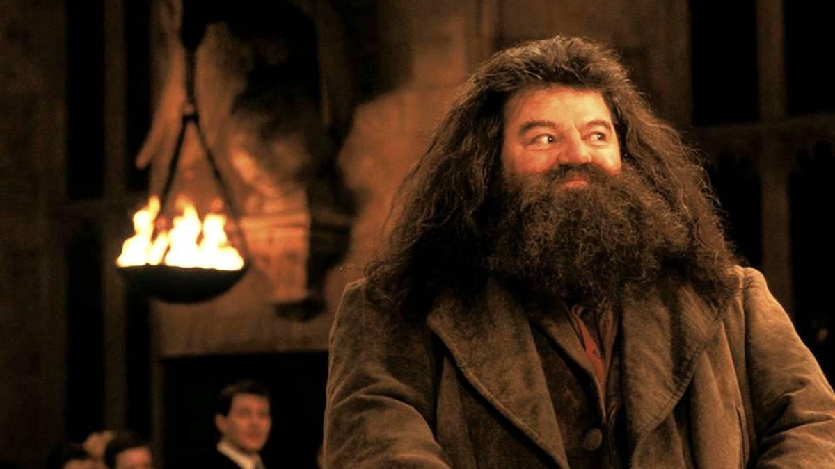 Actor de Harry Potter confinado a una silla de ruedas