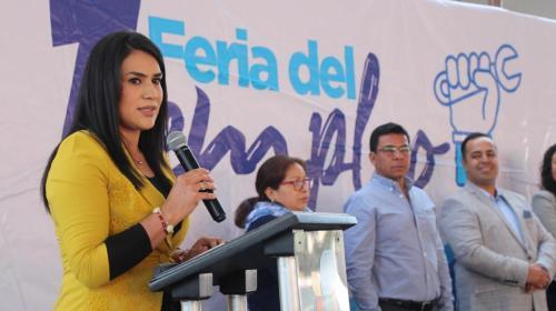 Optimismo y esperanza en la 1ª. Feria del Empleo Huehuetoca. Noticias en tiempo real