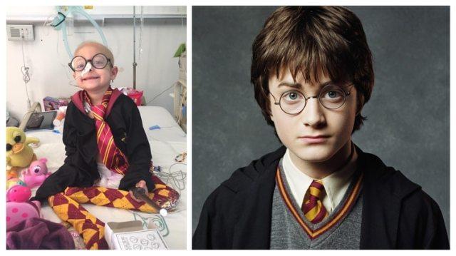 Harry-potter-mexico-01152019