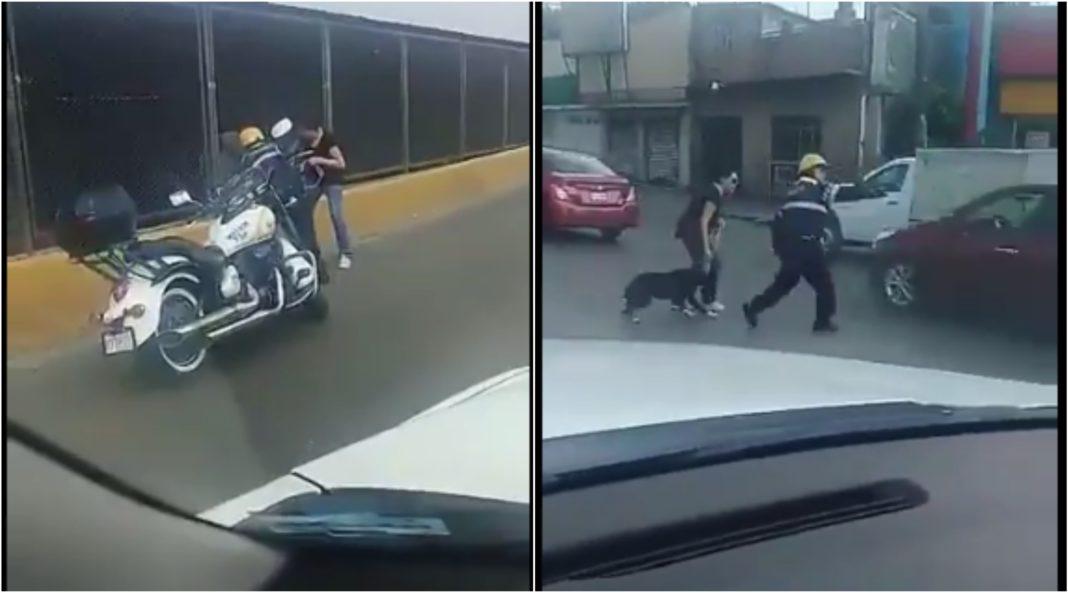 Detiene policía el tránsito para salvar a perrito