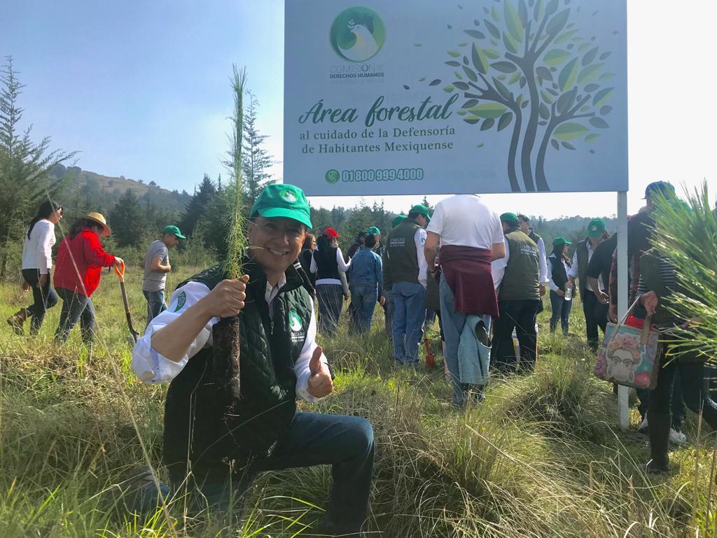400 árboles son plantados en el Sierra Morelos por Servidores Públicos de la CODHEM