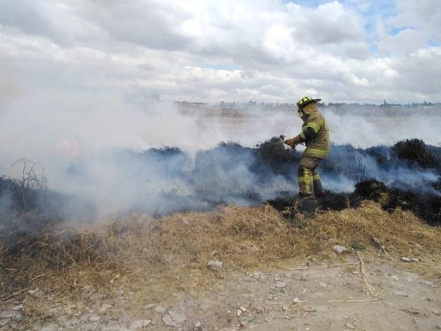 Bomberos de Toluca sofocan 137 incendios en pastizales