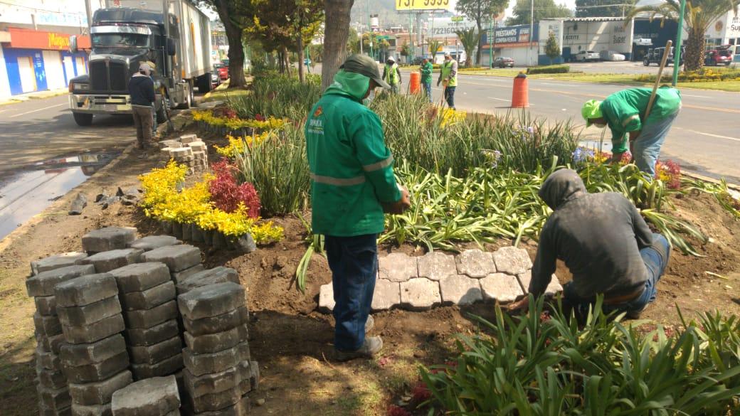 Construye Toluca en camellón de Comonfort montículos ornamentales