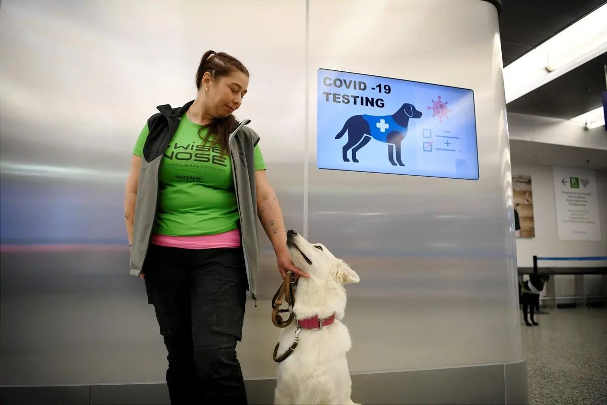 Utilizan perros en el aeropuerto de Helsinki para detectar COVID-19