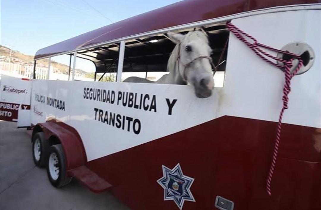 Prohíbe Ecatepec empleo de animales para recolección y traslado de basura