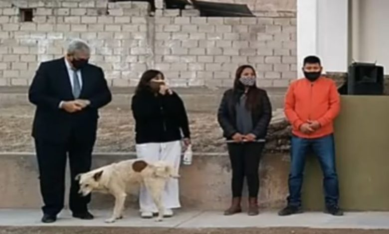¡Fuchi! Canino orina a presidenta municipal en Argentina