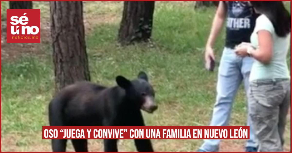 """#Video Oso """"juega y convive"""" con una familia en Nuevo León"""