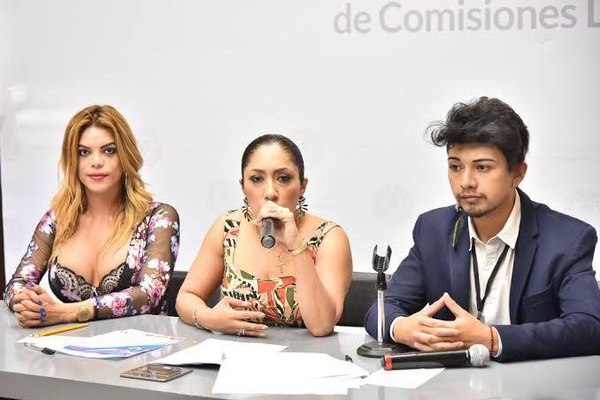 Bancada de Morena pide a Fiscalía indagar amenazas contra diputada Liliana Gollás