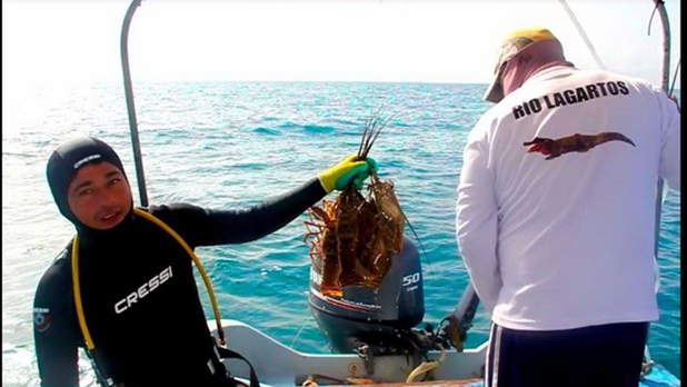 La pesca furtiva en costa Esmeralda de Yucatán es operada por una ´mafia´