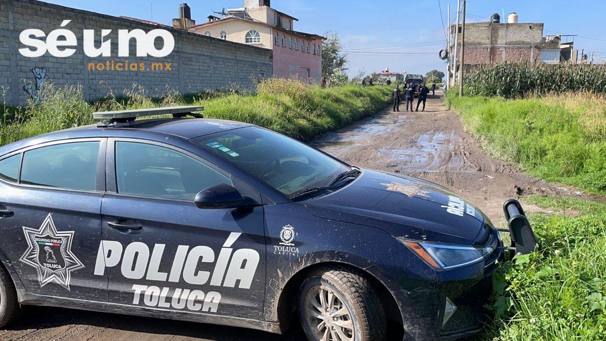 Perros devoran restos humanos abandonados en Toluca