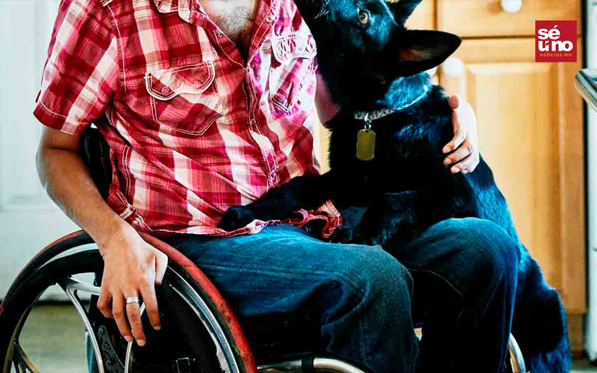#VIDEO Hombre en silla de ruedas salva a su perrito de una jauría