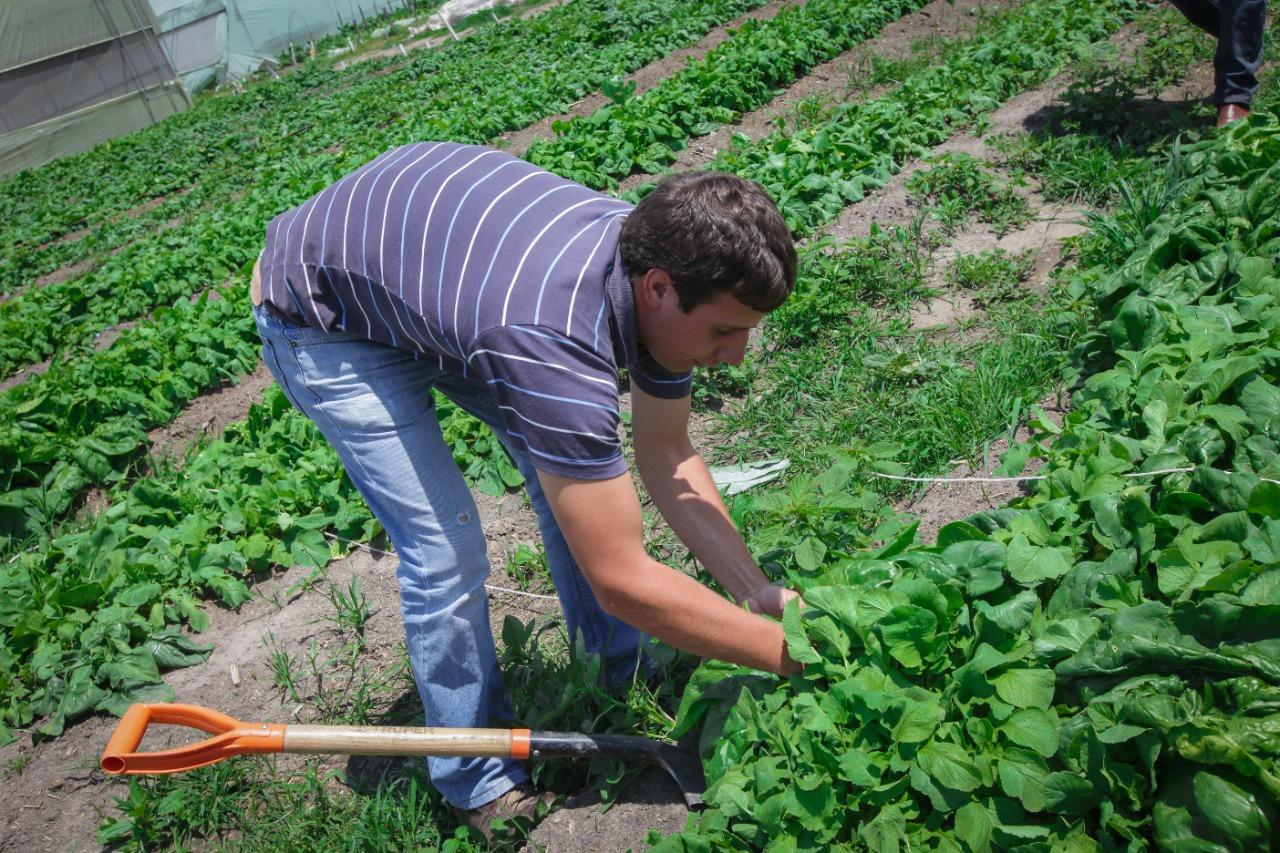 Fortalece UAEM alianzas estratégicas para la formación de capital humano del sector agrícola