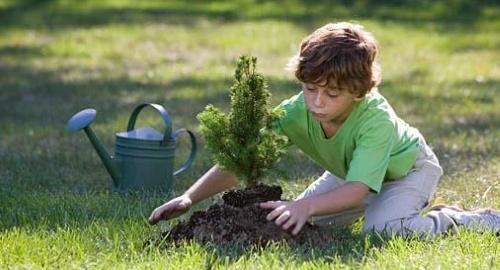 10 Principios para el Crecimiento Personal