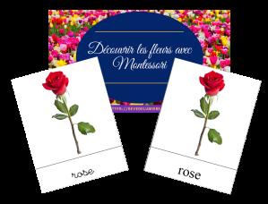 support pédagogique les fleurs