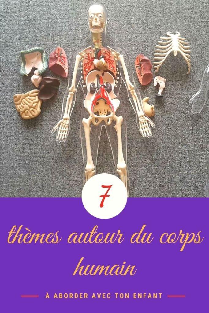 découvrir le corps humain en maternelle