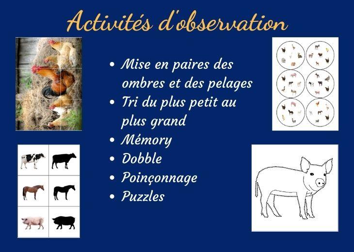 activités montessori ferme #activitesmontessori #activitesferme