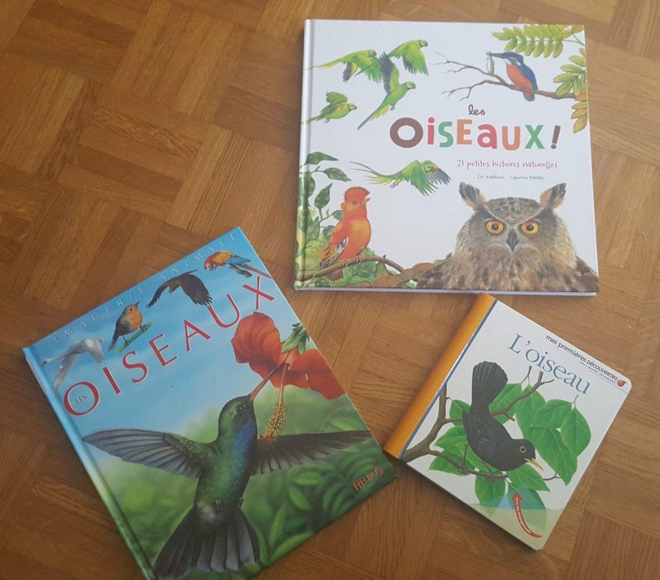 livres oiseaux #livresenfants #livresoiseaux