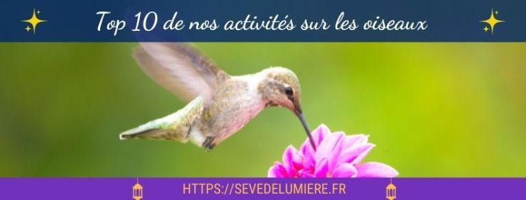 activités oiseaux enfants #oiseauxmontessori #activitesoiseaux