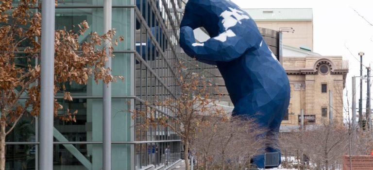 Денвер. «Под колпаком» у синего медведя