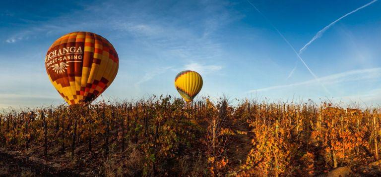 Воздушные шары над виноградниками Темекулы