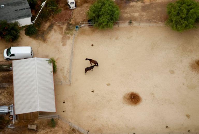 Дома в Темекуле настолько большие, что многие могут завести лошадей