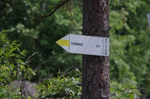 Turbacz - 01