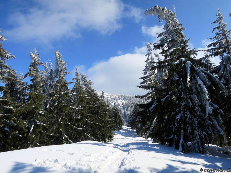 Do góry niebieskim szlakiem granicznym