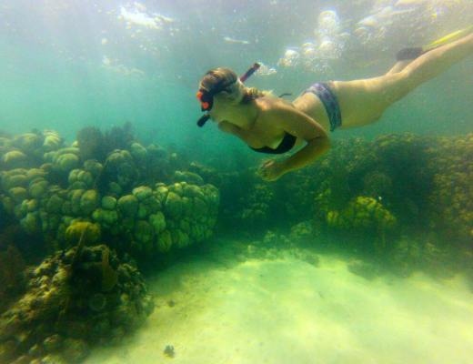 Snorkelling in the Belize Barrier Reef, Caye Caulker