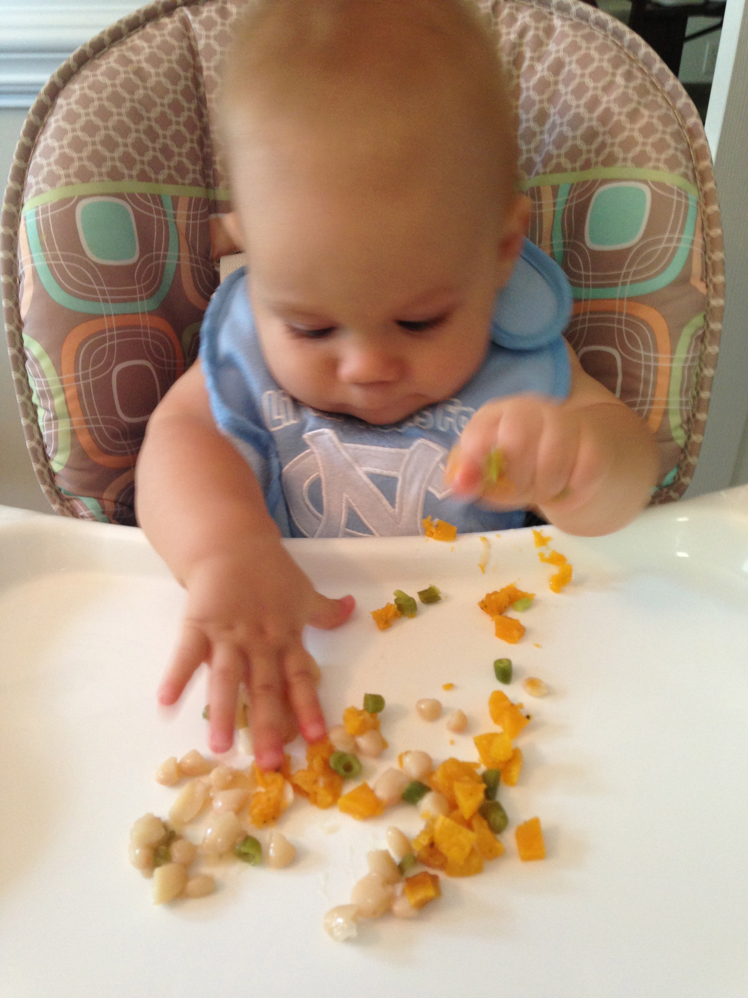 Baby Food 8 To 9 Months Sevenlayercharlotte