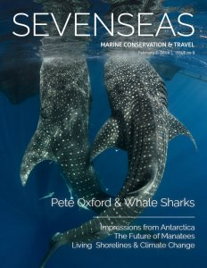 pete oxford whale sharks february 2016 sevenseas media issue cover marine conservation and travel