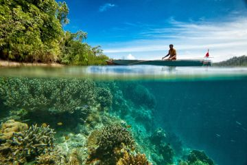 man in a boat over coral reef New research predicts the future of coral reefs under climate change