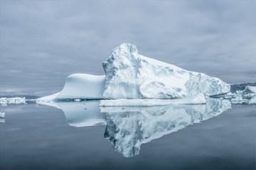 karim iliya conservation photography sea turtle iceberg and humpback whale