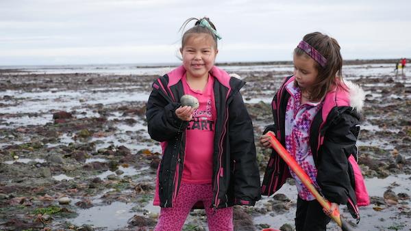 Harvesting Butter Clams, Haida Gwaii, great bear sea