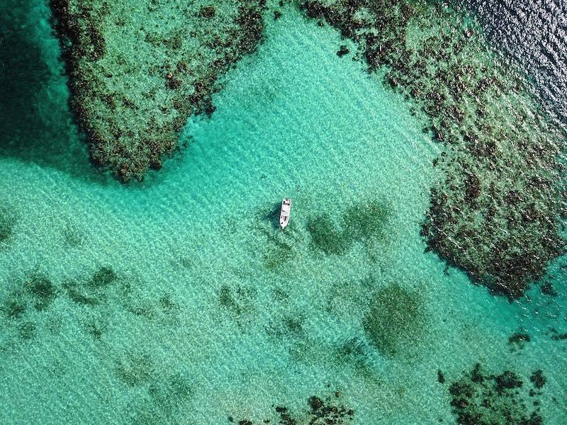 Sun Divers Roatan by Manu Bustelo for SEVENSEAS Media