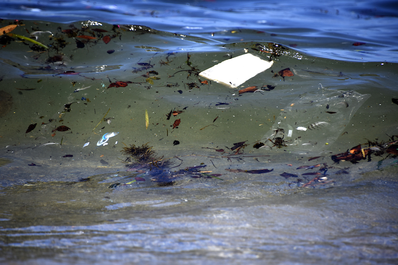 trash floating in the water in australia