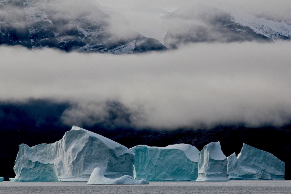 On Thin Ice! Polar Bears in a Warming World: The Impact of