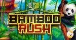 betsoft-announces-new-slot-games
