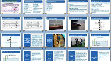 marine cargo ship surveyors