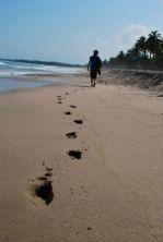Caroline, Palomino beach