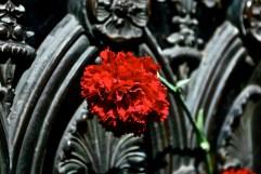 Evita's grave, La Recoleta